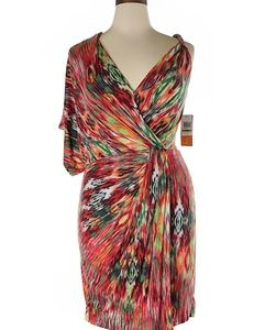 Colorful Maggy London Dress